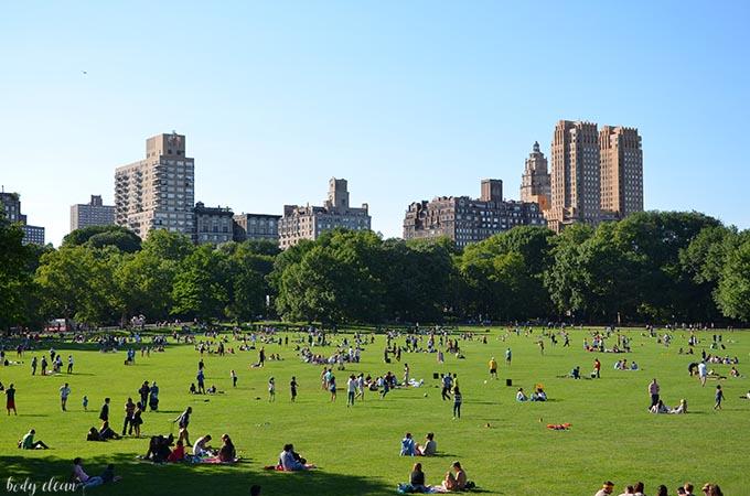 Nowy Jork co warto zobaczyć Central Park