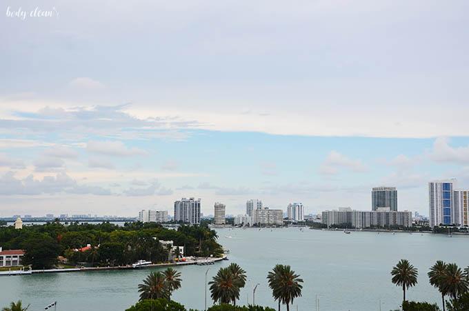 Port Miami terminal